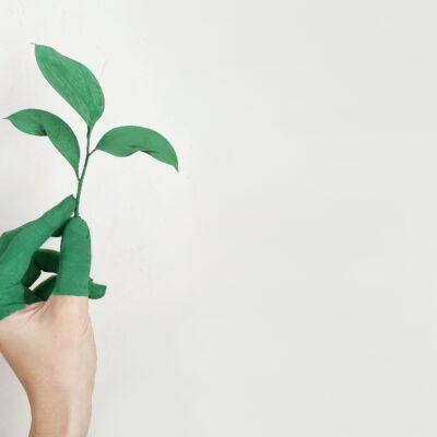 Environmentally-friendly-house-paint